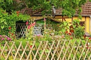 Blühender Bauerngarten mit Gartenbank