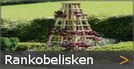 Rankobelisk Rankgitter Rankhilfe Holz und Metall Rankpyramide Sortiment entdecken
